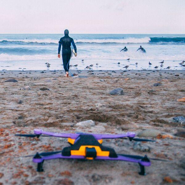 airdog-on-beach