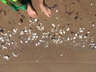 Barfuss-im-Ostsee-sand-strand