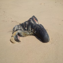 menschenleerer-Strand-Ostsee