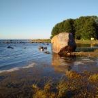 084 Poama – Körgessaare – Kärdla (Hiiumaa)